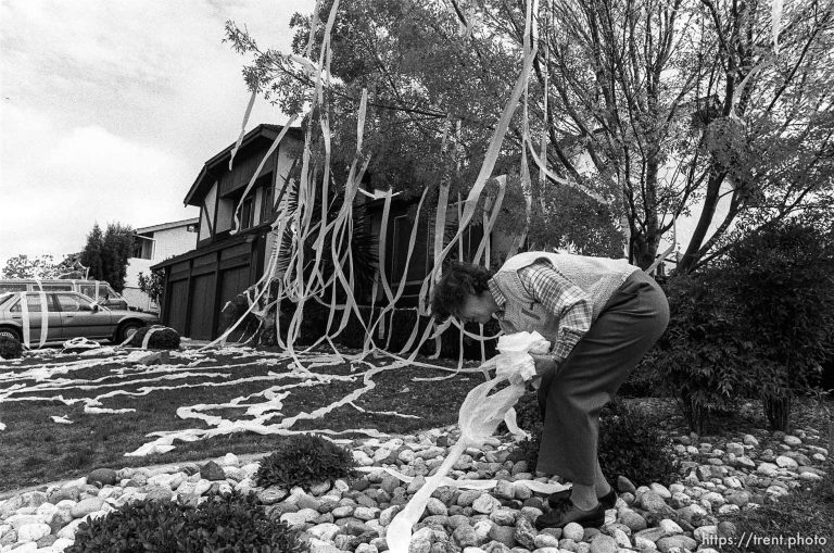 Toilet Papered