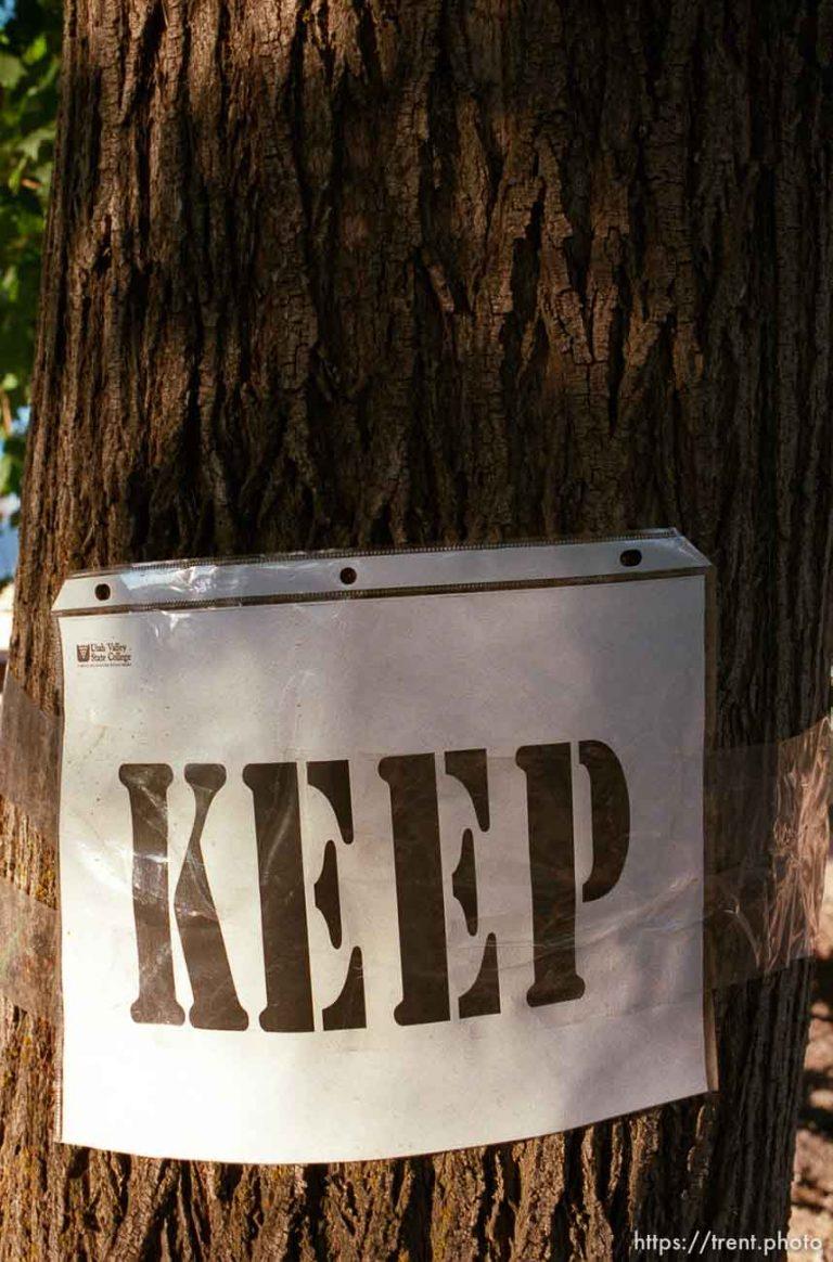 Keep Remove