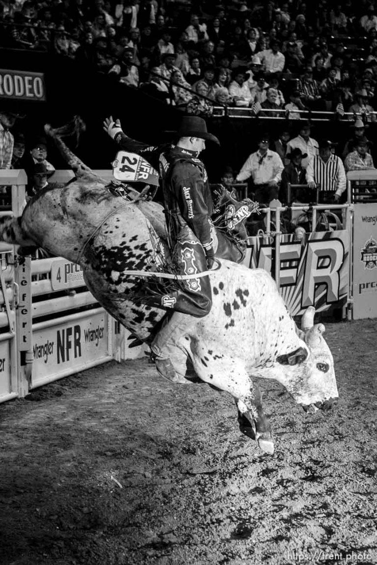 NFR Bull Rider