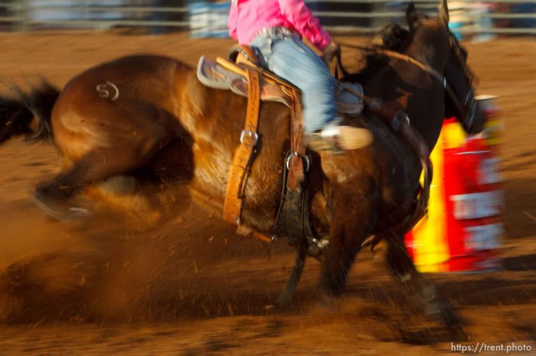 State Rodeo