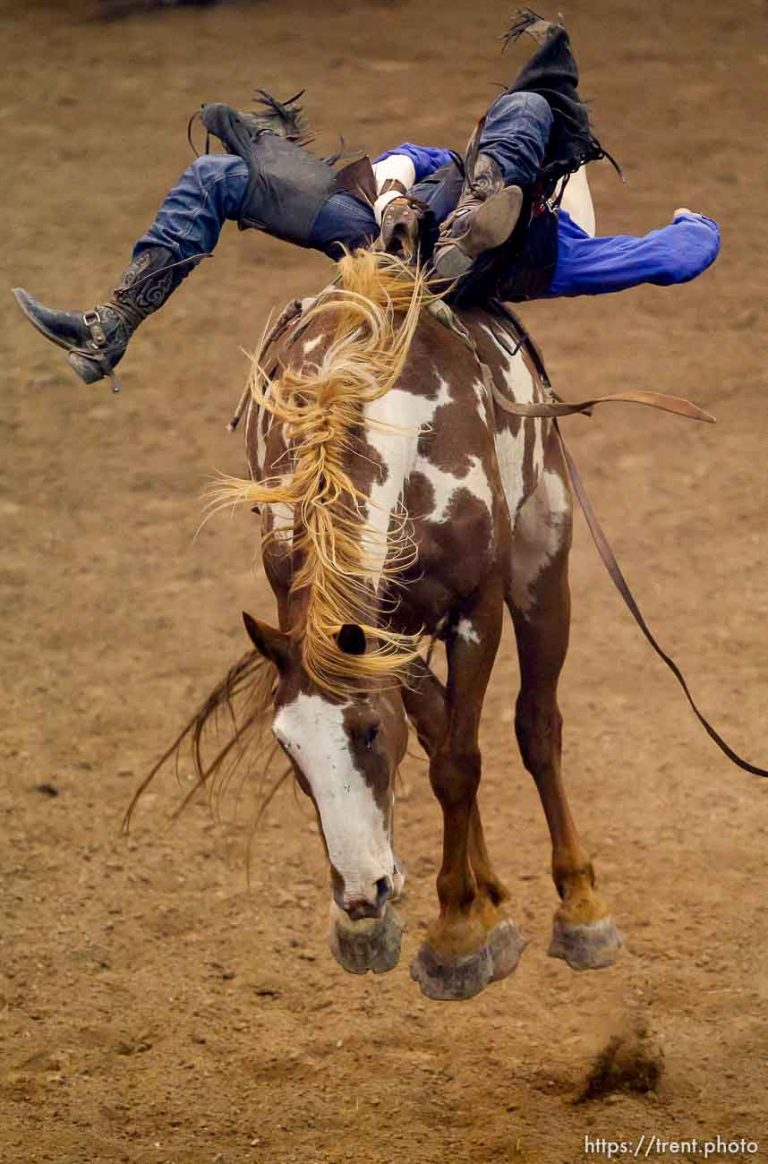 Days of '47 Rodeo