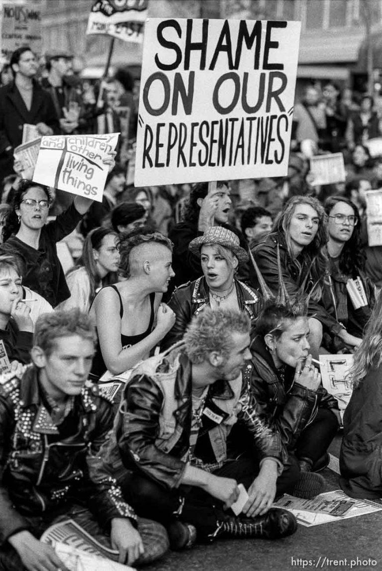 Gulf War Protest