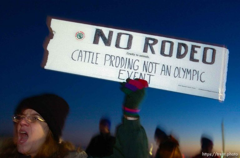 Olympic Rodeo
