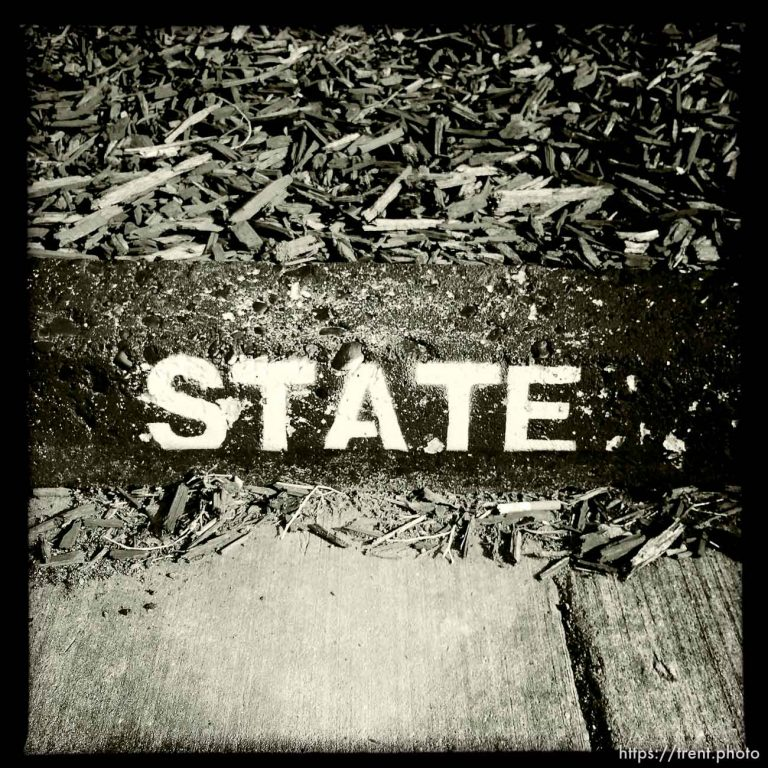 Signs of State