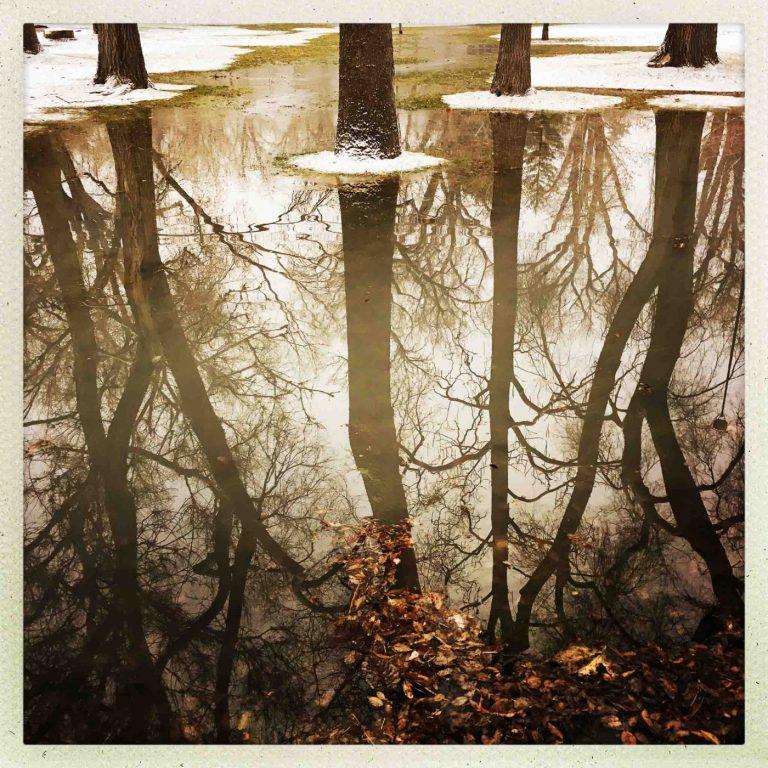 Liberty Park, Flooded
