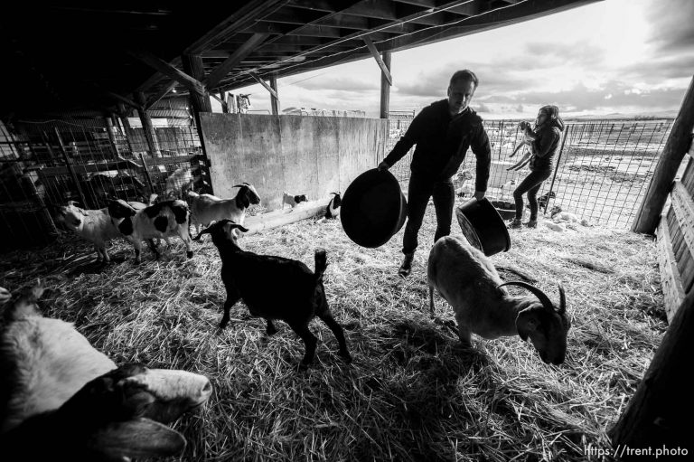 The East Africa Refugee Goat Project