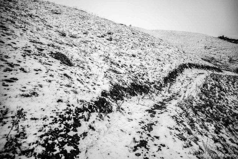 Barren Trail