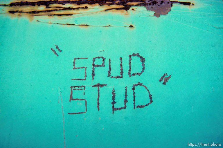 Spud Stud